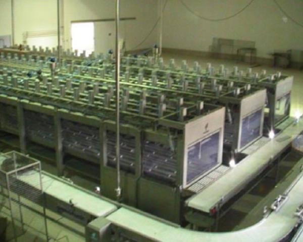 Оборудование, Системы прессования Fibosa