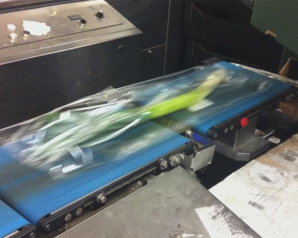 Контроль веса в потоке упаковки лук-порей, готовое оборудование Украина