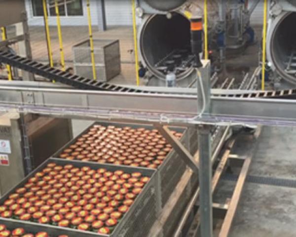 Линия стерилизации огурцов, готовое оборудование для приготовления Украина