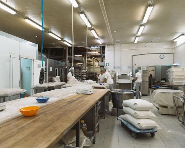 Производство хлеба из замороженного теста, готовое оборудование Украина
